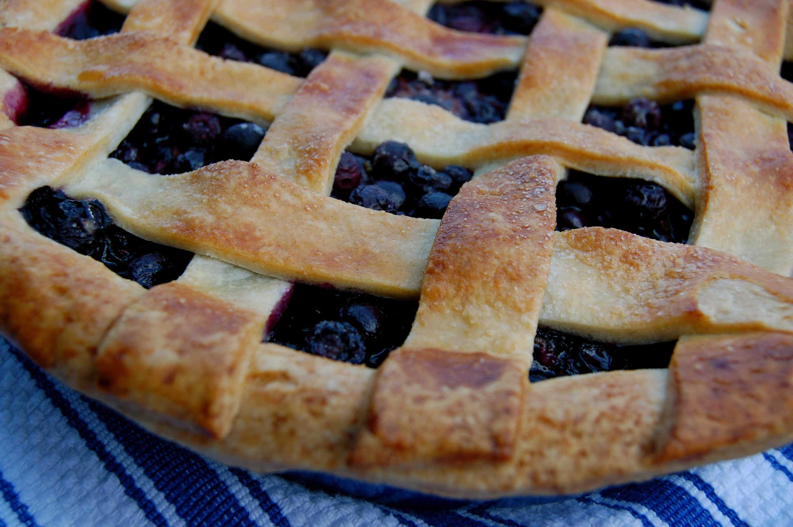 Sweet Pea's Kitchen » Blueberry Pie