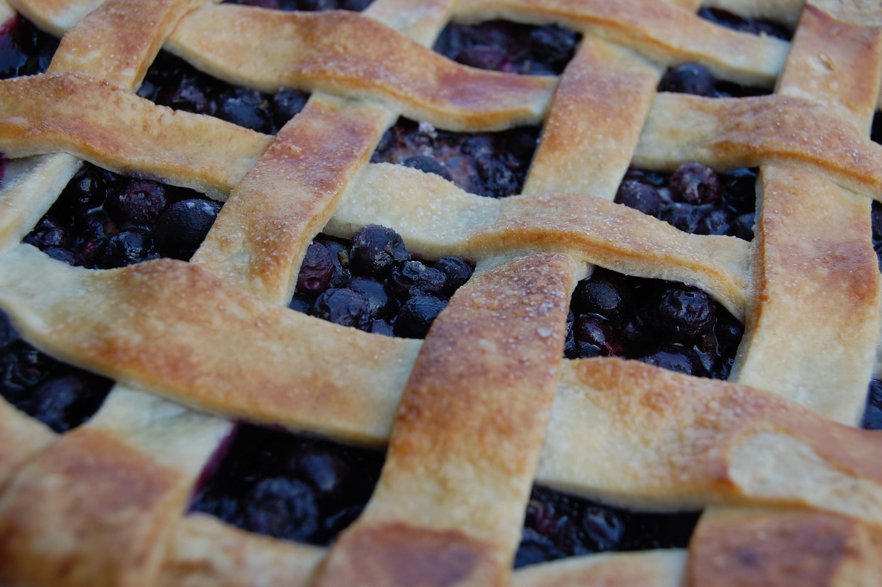 Blueberry pie made with basic pie dough