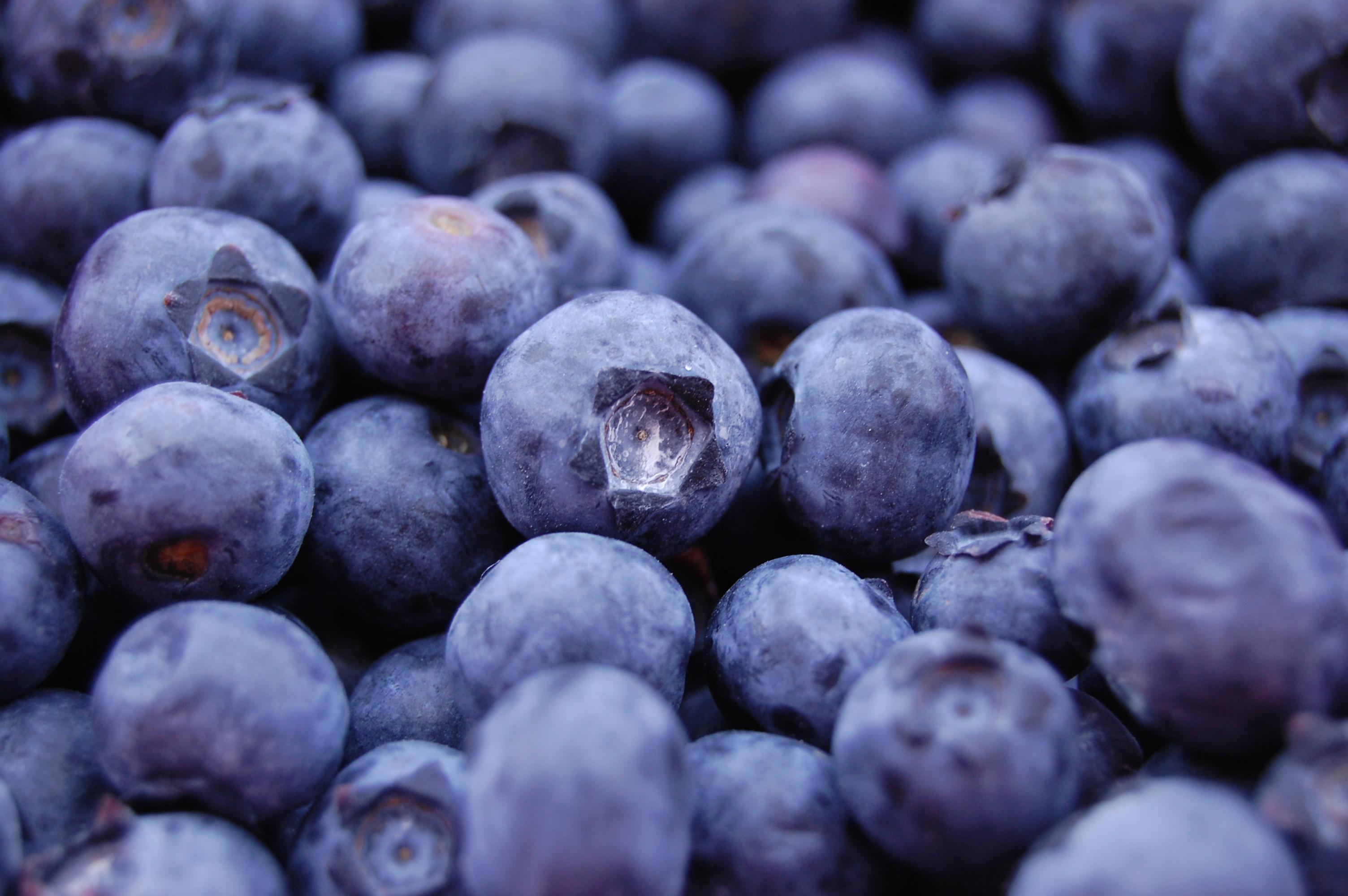 10 Proven Health Benefits of Blueberries