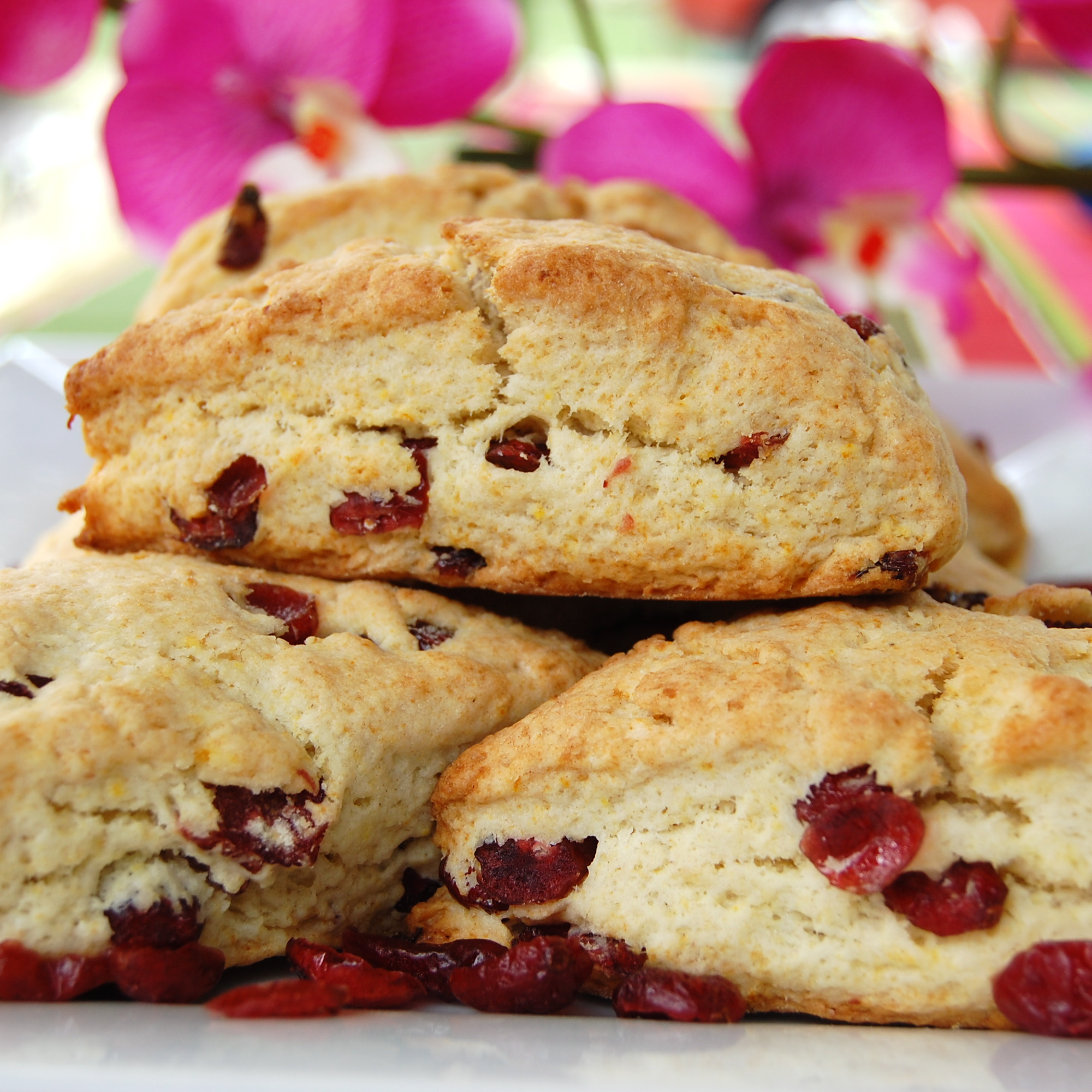 Sweet Pea's Kitchen » Cranberry-Orange Scones