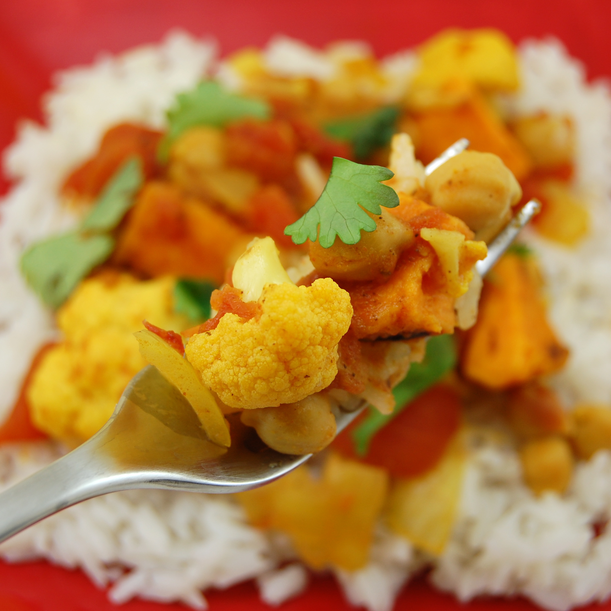 Easy veg curry recipes for rice