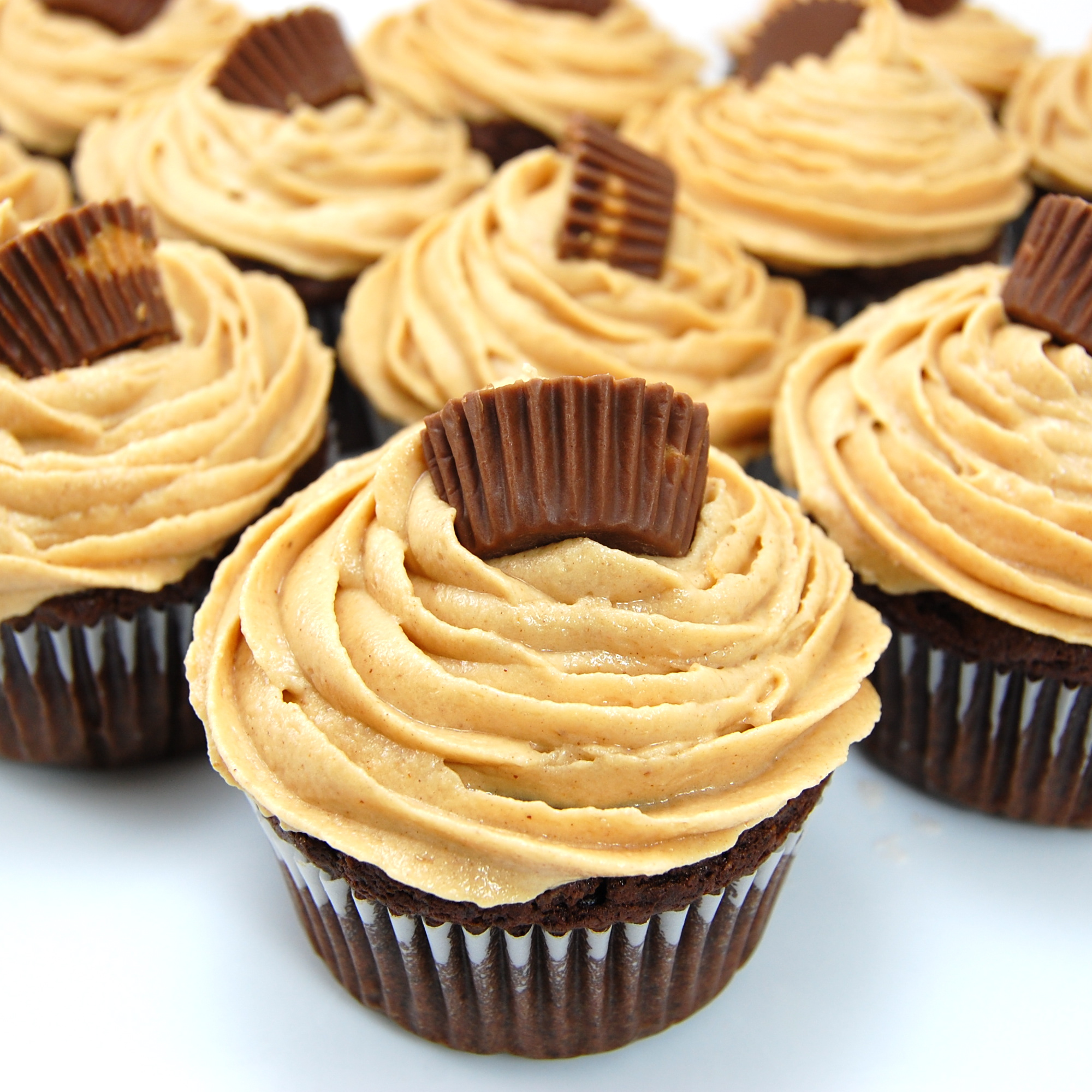Peanut Butter Chocolate Icing Cupcake Recipe